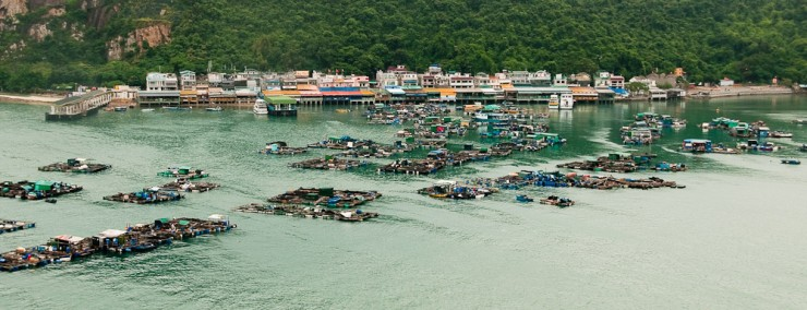 Sok Kwu Wan a harbor located on Lamma Island close to Hong Kong